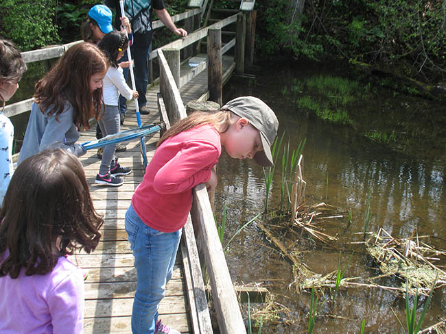 Outdoor Education Programs at Longwoods Road Conservation Area!