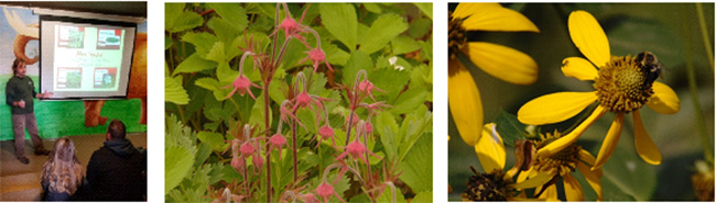 """Step into Nature""  Native Plants Workshop… for nature lovers, gardeners, the curious and fresh air enthusiasts!"