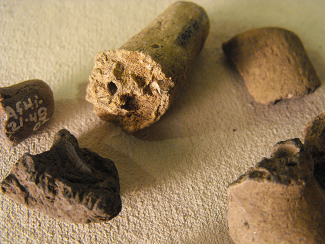 clay pipe fragments