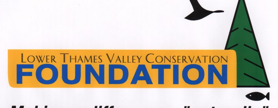 'Feasibility Study Will Examine Broadening Investment in Longwoods Road Conservation Area'    $72,000 Ontario Trillium Foundation 'Seed' Grant Awarded to Lower Thames Valley Conservation Foundation