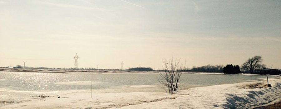 Flooded Field in Lakeshore March 15 2015