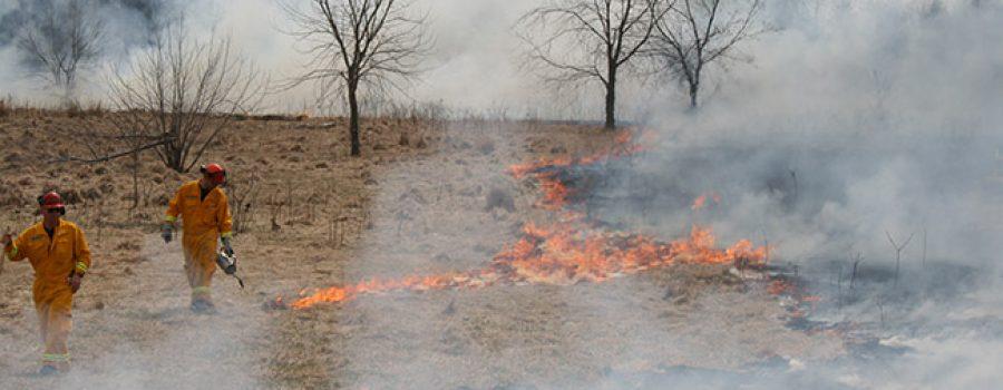 prescribed burn at Sharon Creek Tallgrass Prairie at Sharon Creek Conservation Area
