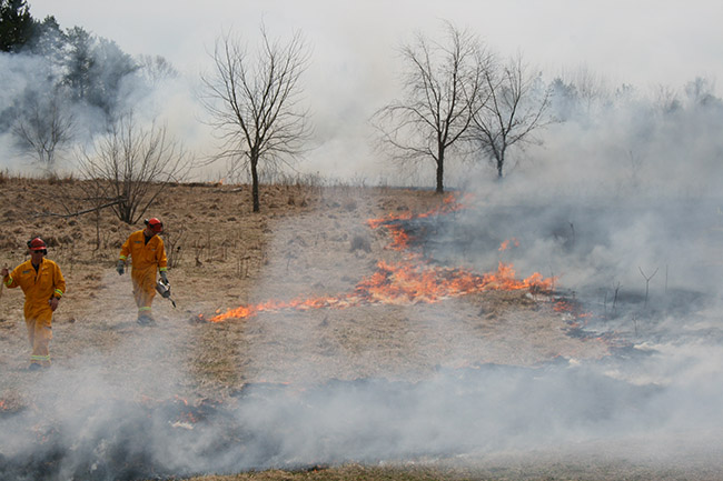 Tuesday Afternoon, April 14, 2015 – Prescribed Burn at Sharon Creek Conservation Area