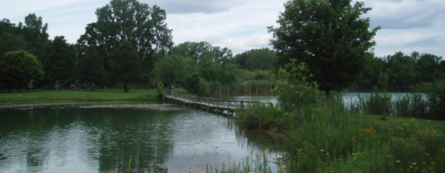 $40,000 granted to LTVCA for watershed-wide wetland restorations