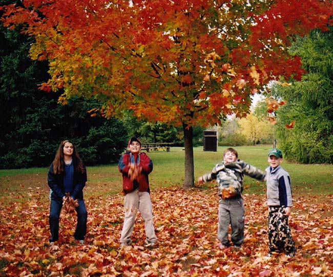 """Book your class trip – fall experiential learning activities""  Outdoor Ed Programs at Longwoods Road Conservation Area!"