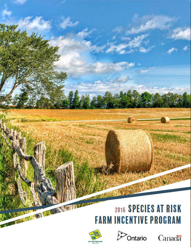 Species at Risk brochure 2016