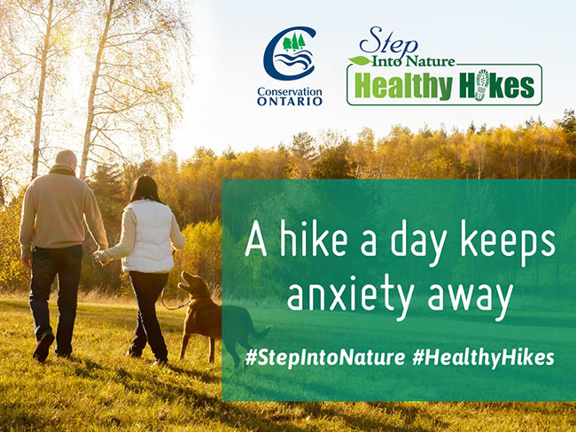Healthy Hikes is Back for 2016!