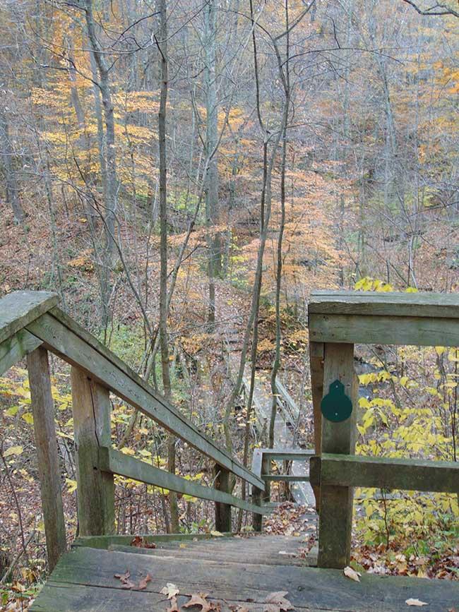 Carey Trail stairway