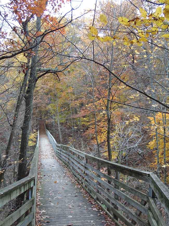 Carey Trail heading over trestle bridge