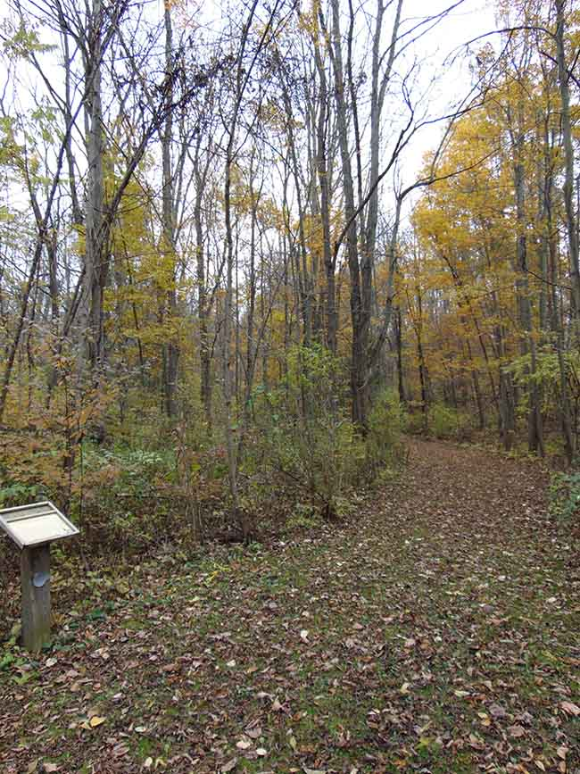 Pondview Trail entrance