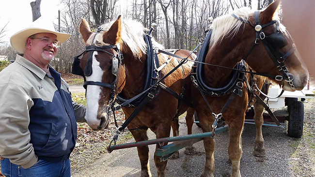 Begium Horse team and wagon ride