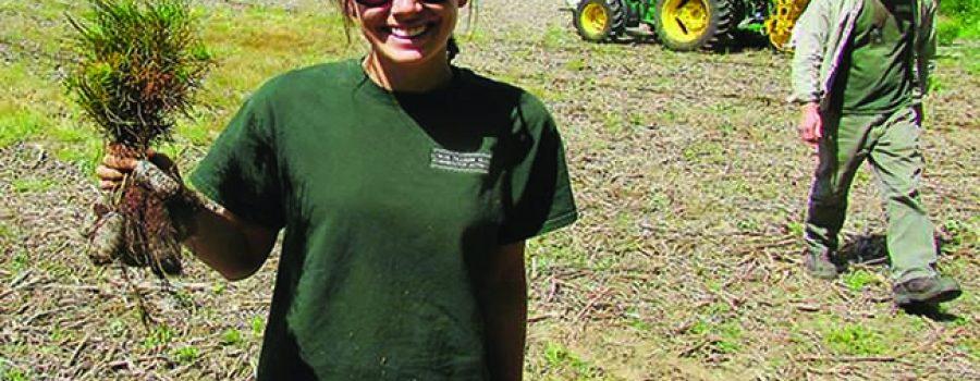 girl with tree seedling