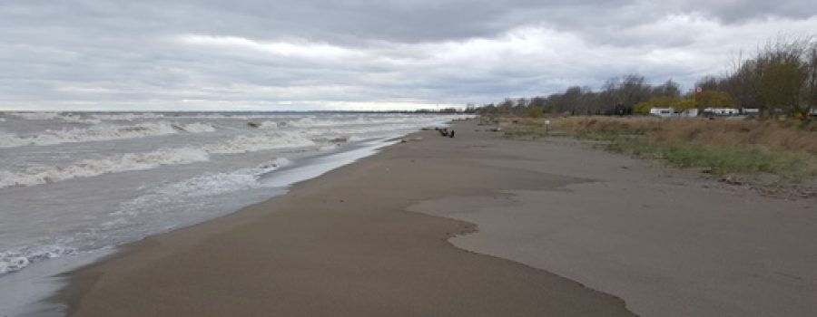 Flood Outlook – Standing message for Lake Erie and Lake St. Clair shorelines – April 2020