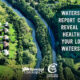 New Conservation Authority Watershed Report Cards Reveal Stressed Conditions in Our Watersheds