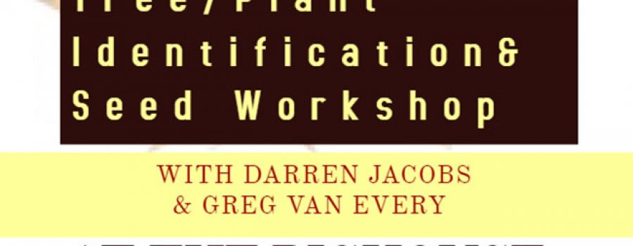 poster for tree id and seed workshop