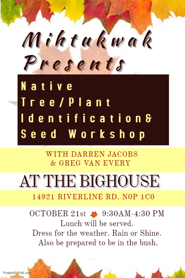 Native Tree/Plant Identification and Seed Workshop