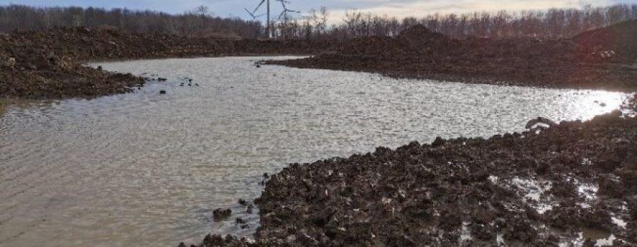 Cedar Springs wetland project 2021