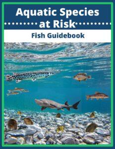 Aquatic Species t Risk Fish Guidebook