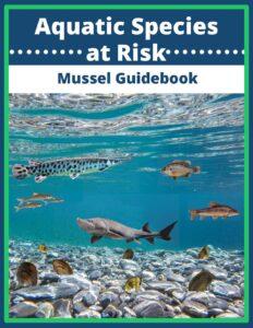 Aquatic Species at Risk Mussel Guidebook